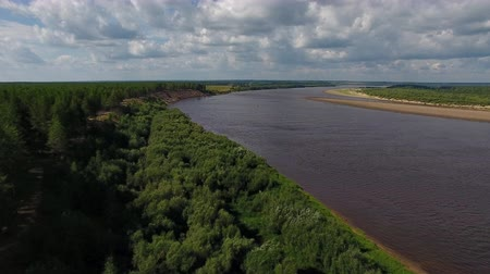 Camera Flies over Forest and River. Video shooting is carried out in the summer with the quadrocopter. The drone flies over a pine forest and a river Stock Footage