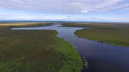Flying over Northern Forest Lake. Top view of the lake in the middle of the Northern forest. The camera flies over the taiga and a long lake