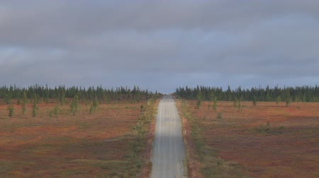 Car Rides on Road among Tundra. Dirt road in the tundra in autumn.
