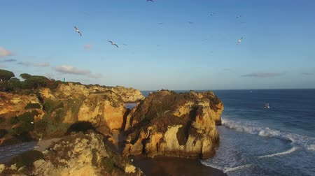 yıllık : flock of seagulls over a rock on the ocean at sunset Algarve, Rotrugal