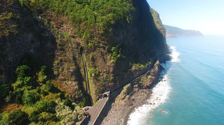 subtropics : aerial view of waterfall and ocean in Madeira island Stock Footage