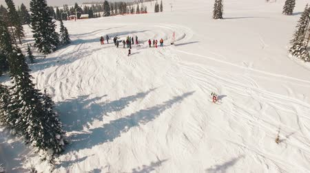snowfield : Snowboarding freeriding in forest aerial view