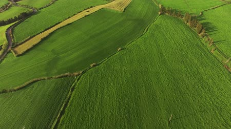terceira island : Panoramic view of the beautiful green agricultural fields in the Sao Miguel, Azores, Portugal.