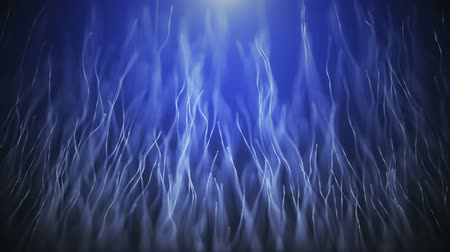 sun beam : Abstract organic background with moving and flicker particles. On beatiful relaxing Background. Stock Footage