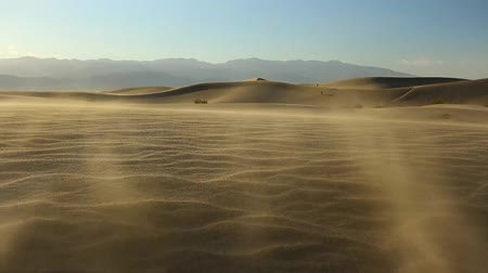 крайняя местности : wind blowing on mesquite flat sand dunes