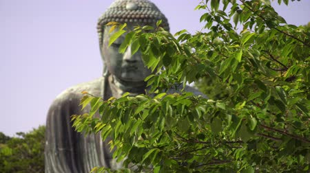 slider shot : great buddha in kamakura appearing behind tree branches