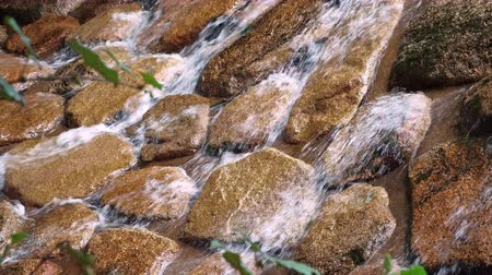 clear rushing water over rocks