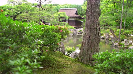 lobby : ancient wooden building in the ginkakuji temple park, sliding shot