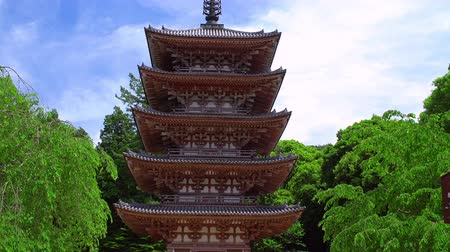 estrutura construída : five story wooden pagoda in a green park, tilt up shot Vídeos