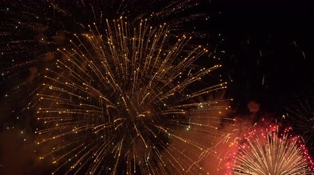 fireworks display in the sky Stock Footage