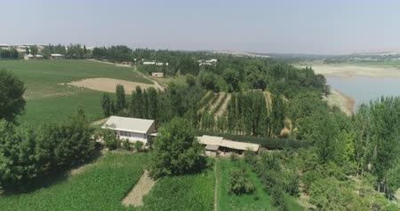 orchidea : Plum and pomegranate orchids in eastern countryside. Drone camera filming from above. Stock mozgókép