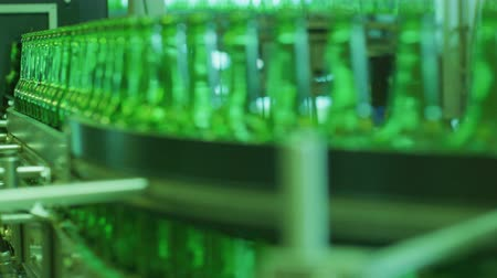 alkoholik : Green beer bottles is moving on the conveyor. Stages of production