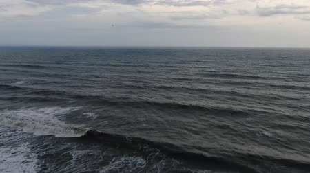 asa : Flying seagulls over the waves of the surf in the sea of ??Bali, Indonesia. Drone shooting.