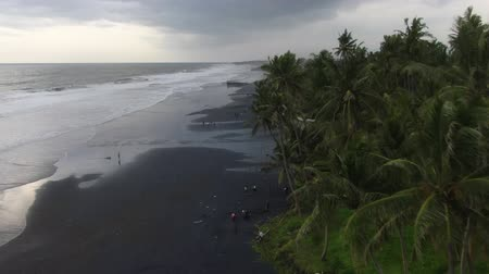Palme dall'oceano in Indonesia, Bali. Drone Shooting.