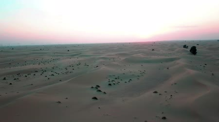sabah : Flight over the sand dunes in the desert of Dubai at sunset. Drone shooting. Stok Video