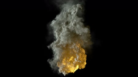explodir : explosion isolated on black, ready for compositing, with alpha Stock Footage