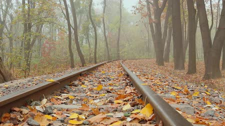 fog, autumn, camera movement across the rail from right to left, bottom view, full HD, no sound.