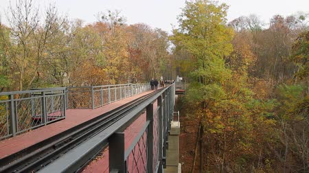 people walk through a narrow-gauge railway bridge over a ravine in the park; camera movement from right to left, Full HD; without sound.