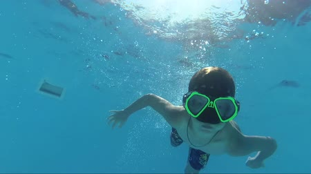 plavec : Boy dive in swimming pool and looking at the camera, underwater shoot Dostupné videozáznamy