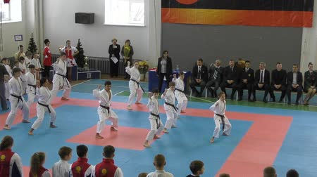 quimono : Orenburg, Russia - November 28, 2015: Young people compete in karate Vídeos