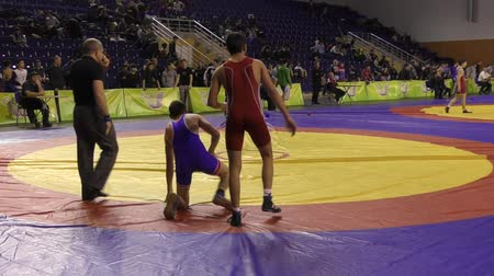 duruş : Orenburg, Russia - January 28, 2016: Boys compete in freestyle wrestling Stok Video