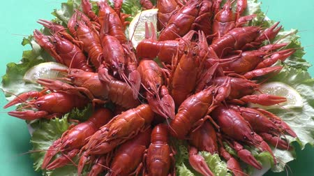kerevit : Boiled crayfish a good snack to beer