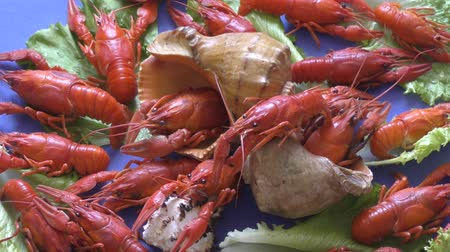 shellfish dishes : River boiled crayfish a good snack to beer
