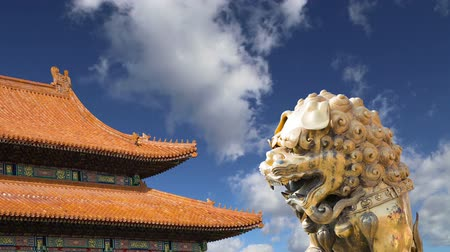 architectural protection : bronze Chinese dragon statue in the Forbidden City. Beijing, China Stock Footage
