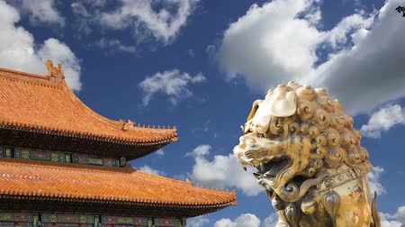 architectural protection : A bronze Chinese dragon statue in the Forbidden City. Beijing, China Stock Footage