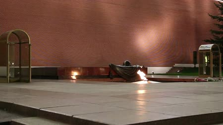 mortal : Unknown Warrior memorial in Moscow (night), Russia ------- Eternal flame at the Tomb of the Unknown Soldier in the Alexander Garden to honor the dead of the Great Patriotic War, Kremlin wall. Moscow, Russia