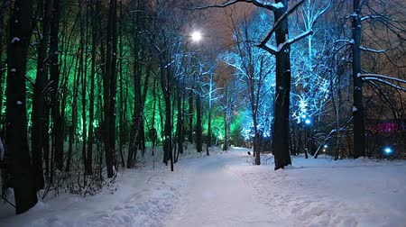 lapso de tempo : Christmas (New Year holidays) decoration in Moscow (at night), Russia-- Sparrow Hills (Vorobyovy Gory)