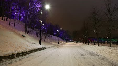 sparrow hills : Christmas (New Year holidays) decoration in Moscow, Russia-- Vorobyovskaya Embankment