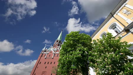 russo : Troitskaya Tower (Trinity Tower) against the sky. Inside of Moscow Kremlin, Russia (day).