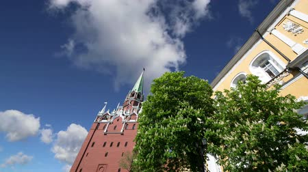 palace complex : Troitskaya Tower (Trinity Tower) against the sky. Inside of Moscow Kremlin, Russia (day).