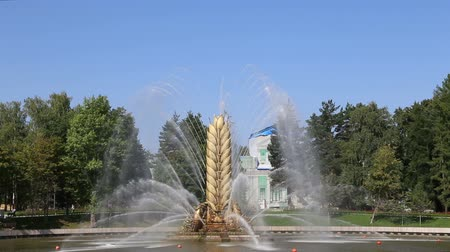 former : Golden Spike fountain on Kamensky pond in VDNH park. VDNKh (also called All-Russian Exhibition Center) is a permanent general-purpose trade show in Moscow, Russia