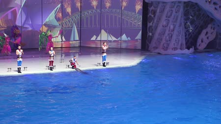 water show : Presentation (Show) VDNKh Moskvarium - the biggest in Europe sea aquarium and entertainment center, Moscow, Russia Stock Footage