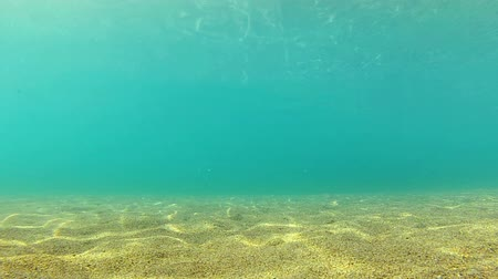 sualtı : Diving Underwater footage Shot in Montenegro, Adriatic sea Stok Video