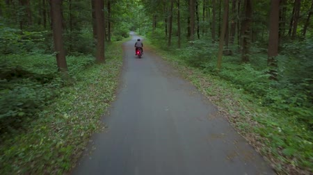 крейсерский : Biker riding a motorcycle on a road surrounded by trees Стоковые видеозаписи