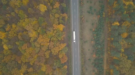 desenvolvimento : Aerial view of a truck and other traffic driving along the road surrounded by autumn forest Vídeos