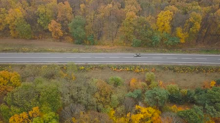 desenvolvimento : Aerial view of car on the road surrounded by autumn forest Vídeos
