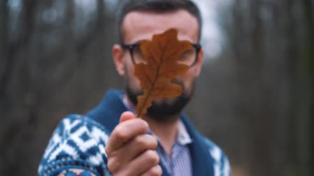 oak : Man in glasses is walking through the autumn forest and looks at the oak leaf close up. Slow motion