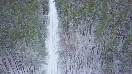 wilderness area : Aerial view on road in the winter snow fores. Scenic winter landscape Stock Footage