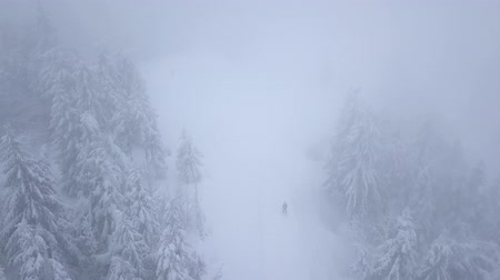 snow covered spruce : Flight over snowstorm in a snowy mountain coniferous forest and on the ski track with unrecognizable skiers, uncomfortable unfriendly winter weather. Stock Footage