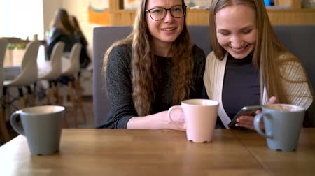 dividir : Two friends woman in cafe using mobile phone and have fun communicating Vídeos