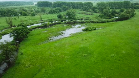 fenomen : Aerial filming over the swampy terrain and meadows