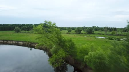 survey : Flight over the Seim River, Ukraine surrounded by trees - aerial videotaping