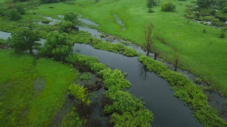 jelenség : Aerial filming over the swampy terrain and meadows