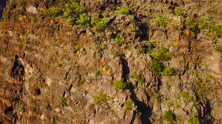 volkanik : View from the height of the rocks in the Masca, Tenerife, Canary Islands, Spain.