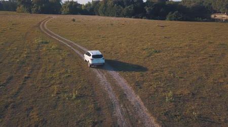 мостовая : Aerial view on car driving through the road on a summer meadow