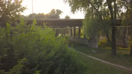 semt : Aerial view of road bridge surrounded by green trees at sunset Stok Video